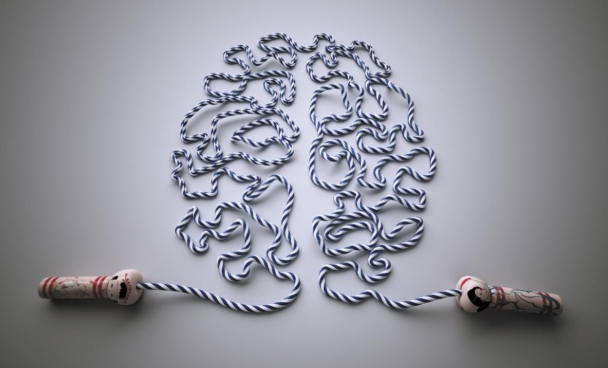 20 Curiosità Sul Nostro Cervello